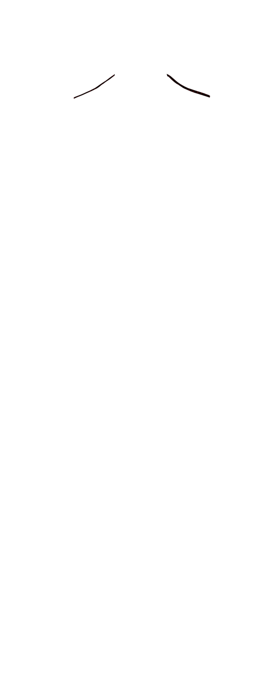 NEFL-13
