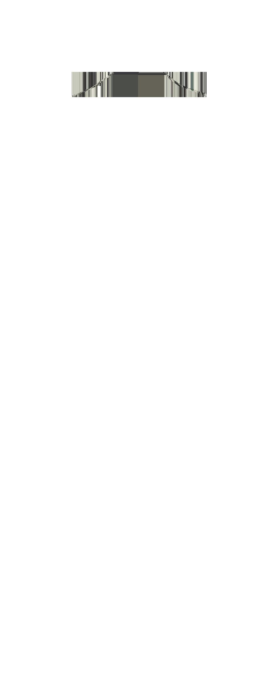 NEFL-7
