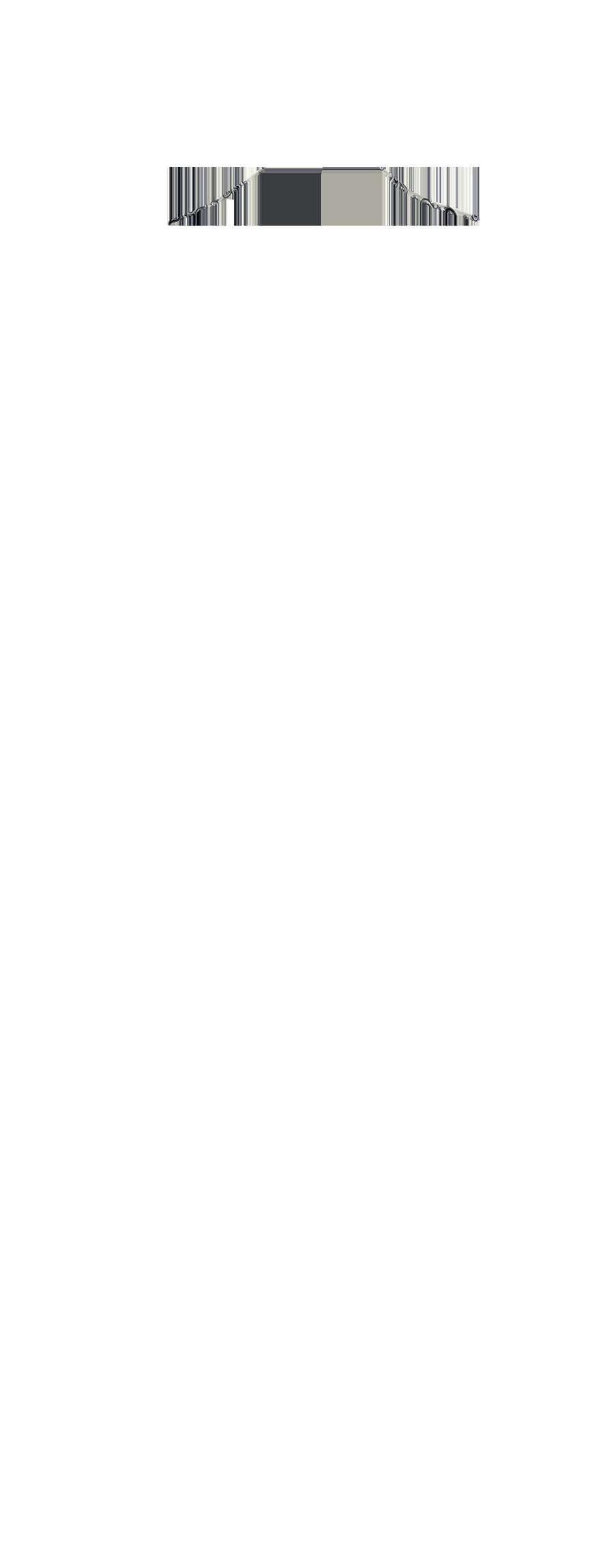 NEFL-19