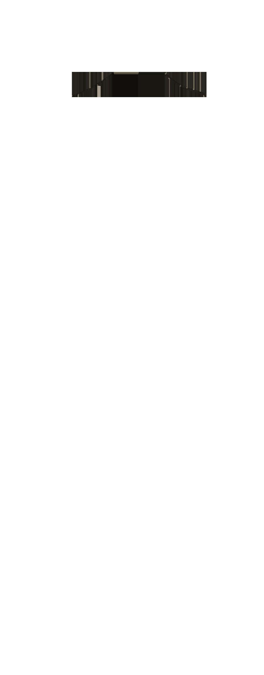 NEFL-16