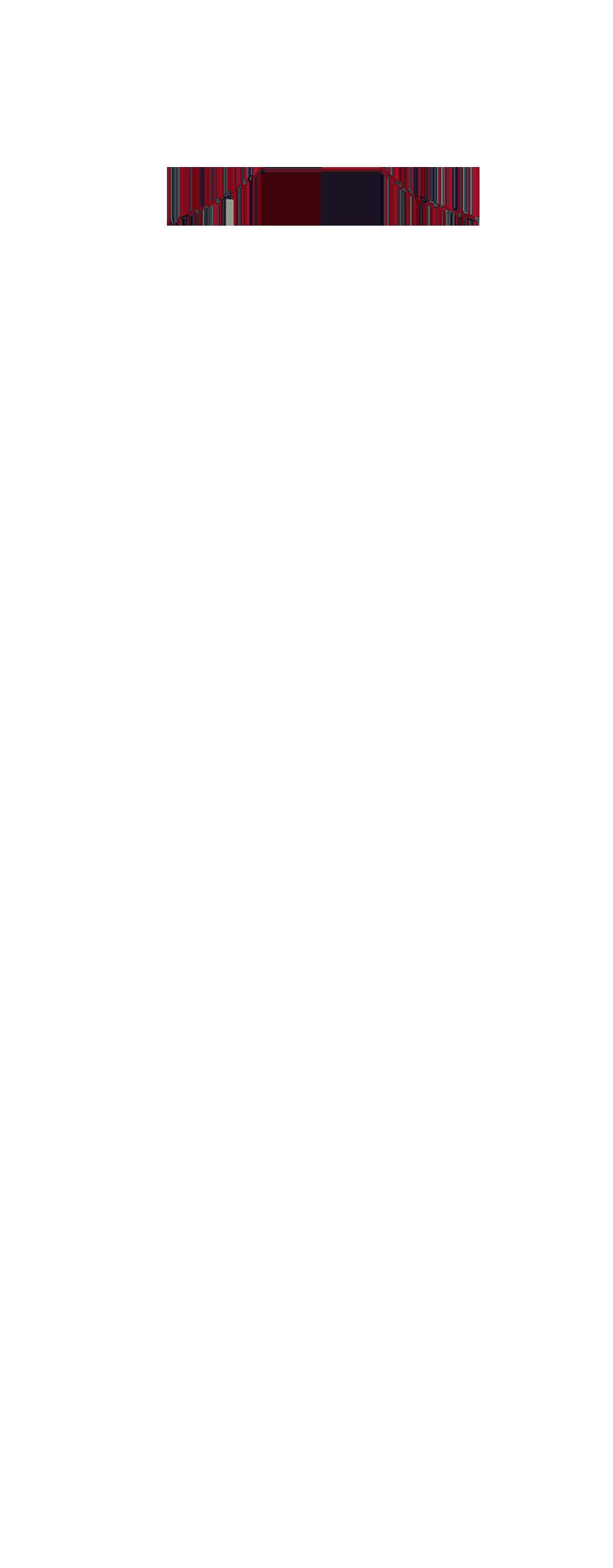NEFL-17